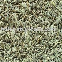 dehydrated fennel