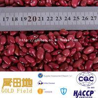 Good Small red kidney bean,HPS type