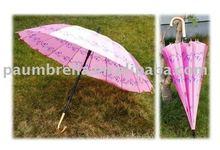 rain lady's umbrella
