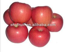 Chinese sweet best price fuji apples