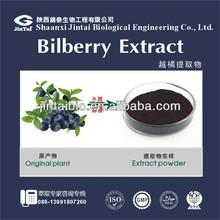 Bilberry P.E.