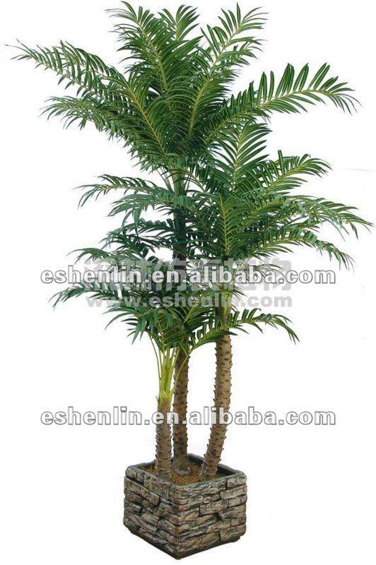 Gros soie arbres et plantes dintérieur en pot palmier en chine-Fleurs &a...