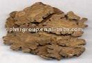 100% Natural 4:1 Powder Szechwan Lovage Rhizome Extract