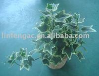 artificial leaf,bonsai