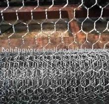 """1"""" Fish Trap Hexagonal Wire Mesh (factory)"""