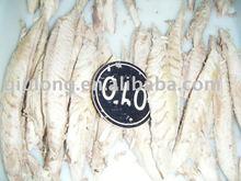 frozen food (delicious tuna loin)