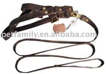 supply quality pet collar & leash set