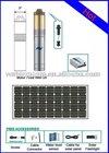 2011 Solar Submersible Water Pump