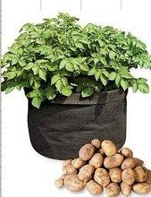 PP nonwoven garden grow bags