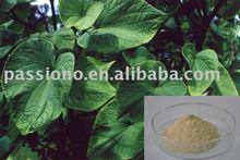 Very hot sales KAVA KAVA P.E. Min. 30% Kavalactones, Herbal extract