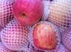 china yantai delicious fuji apple fruit exporter