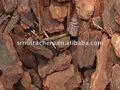 hot vender pine bark extract