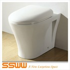 High Grade Sanitary Ware Ceramic Toilet Wall Hung
