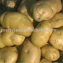 2014 low price Chinese fresh potato exporter