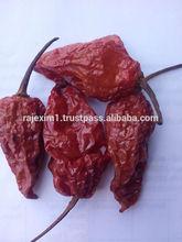 naga chilli