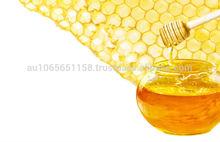 Australian Raw Manuka Honey