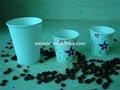 maßgeschneiderte Anpassung 4 unzen kompostierbare mini papier dessert tassen