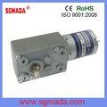 12v par de alta y baja de rpm del motor de corriente continua con el gusano caja de cambios