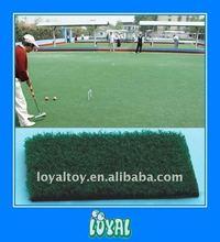 LOYAL Brand printed carpet