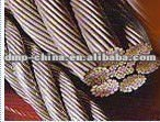 High Quality Stainless Steel Wire rope 304 316