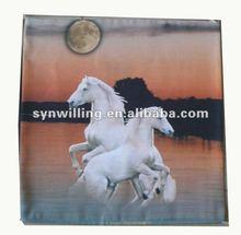 photo printing custom design cushion cover /pillow case