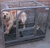 Stainless Steel Dog Cage/OEM
