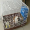 Professional guinea pigs indoor kennel box cage