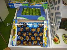 Design Food Tray for Fresh Fruit