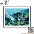 hot vente 3d image lenticulaire de dauphin