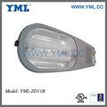 Cobra calle luminaria lámpara de inducción