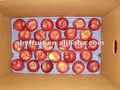 washington rojo manzana huaniu apple