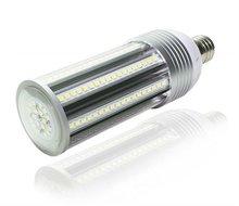 E40 54W High Power LED Garden Light
