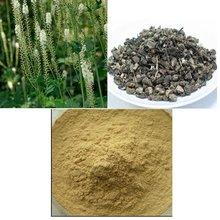 Black Cohosh Extract 2.5%,5.0%,8.0%HPLC