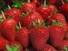 Frozen fruit strawberry
