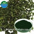 Fabricante pure natural de alta qualidade pó de clorofila, sódio cobre clorofilina, super pó de clorofila