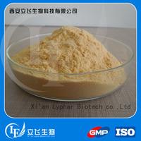 Top Quality Gotu Kola Extract /10%-90% Triterpenoid saponis