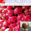 High Quality Pitaya Extract Powder