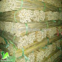 natrue raw bambus poles/canes/stakes/sticks cheap