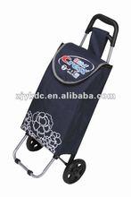 fashion shopping cart