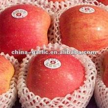 Chinese Red Apple/Fuji Apples (20kg carton)