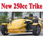 EEC 250CC ATV TRIKE (MC-369)