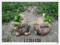 la resina de rana con detector de la sombra de la resina de rana en regalos y artesanía