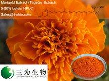 Marigold Extract, Lutein 5-80% HPLC