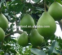 bulk fresh fruit honey pomelo 2015 new crop