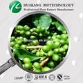 الأخضر استخراج القهوة بقول 10%، 50%/ تكملة فقدان الوزن