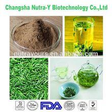 Made in China Natural Raw Materials Polyphenol Tea Extract