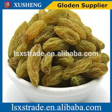 Dried Fruits, Fig, Date, Raisin, Golden Raisin, Pistachio