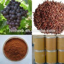 china supply natural antioxidant proanthocyanidins powder 95% opc grape seed P.E.