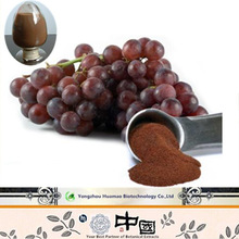 high effective antioxidant proanthocyanidins 95% opc powder grape seed extract softgel capsule
