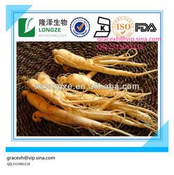 100% natural Extract Panax Ginseng/Ginsenosides 80% Panax Ginseng extract/Panax Ginseng extract powder CAS NO. 90045-38-8